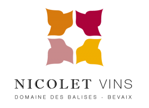 logo_coul png